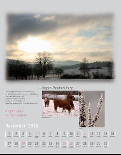 Dezember_2010