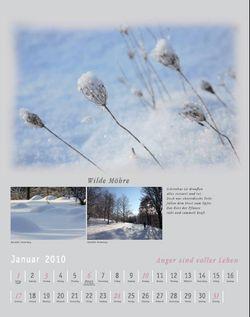 Januar_2010