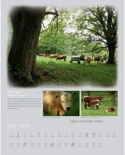 Kalender2011_klein_008