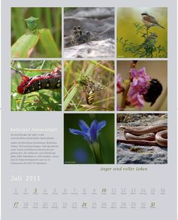 Kalender2011_klein_009