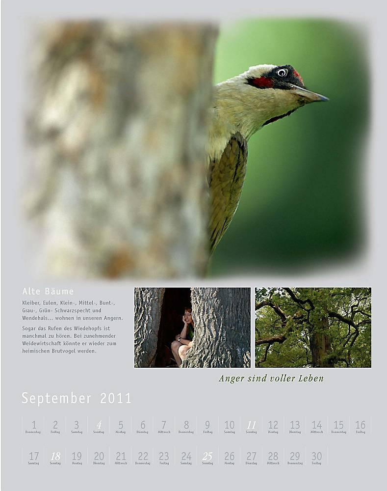 Kalender2011_klein_011