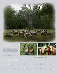Kalender2011_klein_012