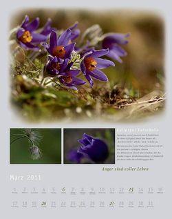 Kalender2011_klein_005