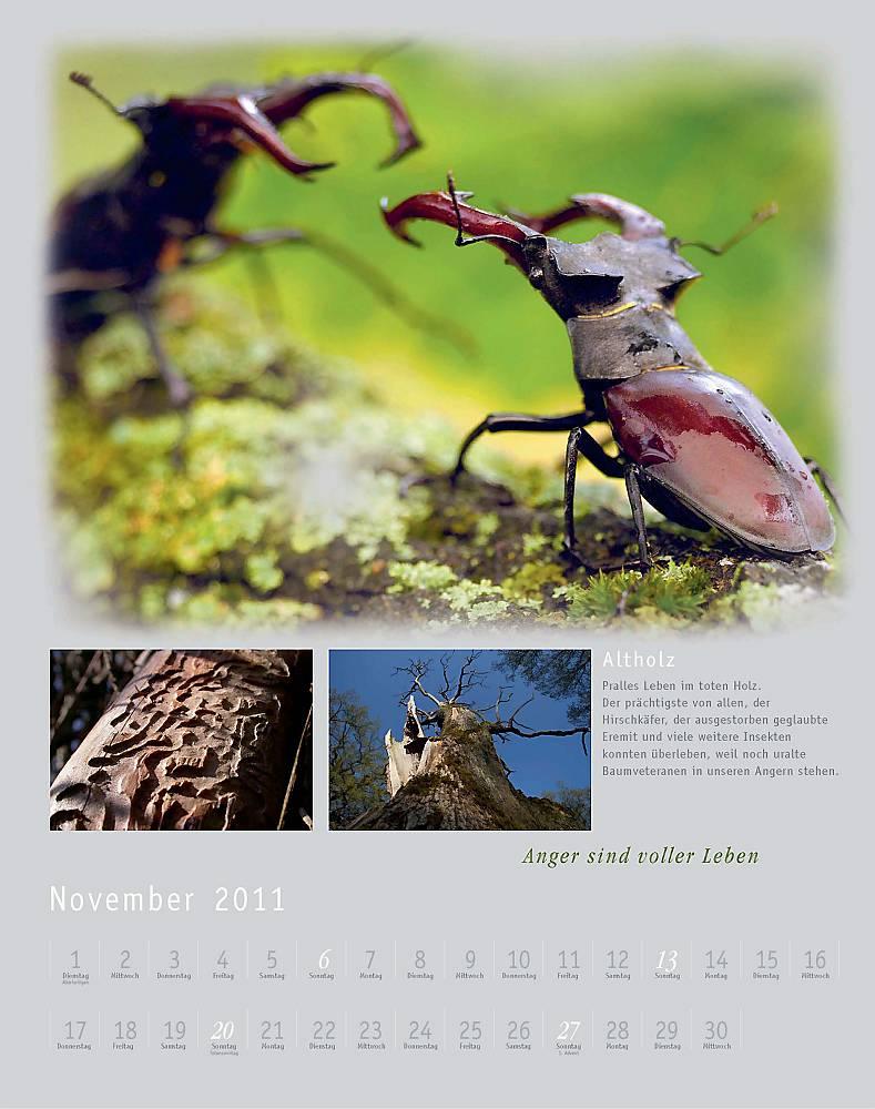 Kalender2011_klein_013