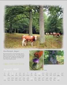 Kalender_augustblatt