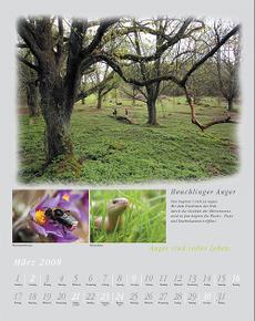 Kalender_maerzblatt_4