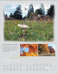 Kalender_novemberblatt